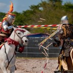 The Great Joust Revival